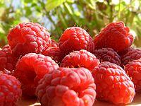 ягоды от рака груди